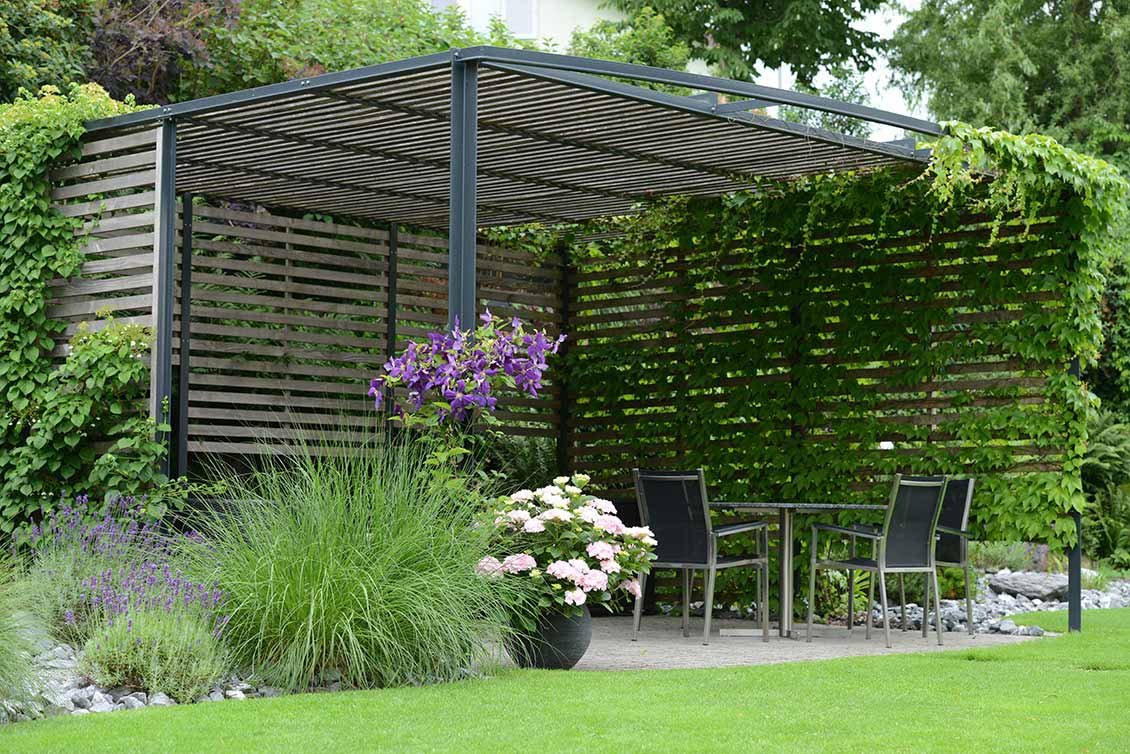 Sichtschutz Im Garten Gartengestaltung Andreas Jakob Gmbh